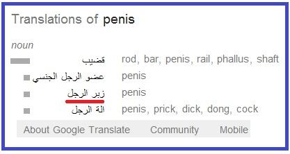 قضيب الرجل penis
